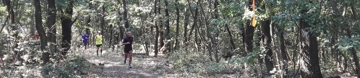 Bakonyi kalandok